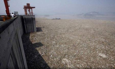Китай превращается в мусорку (33 фото)