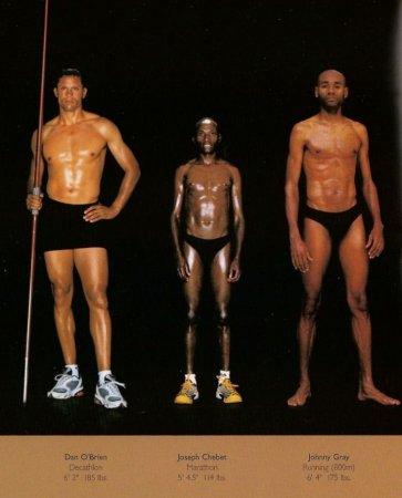 Телосложения людей, занимающихся разными видами спорта (35 фото)
